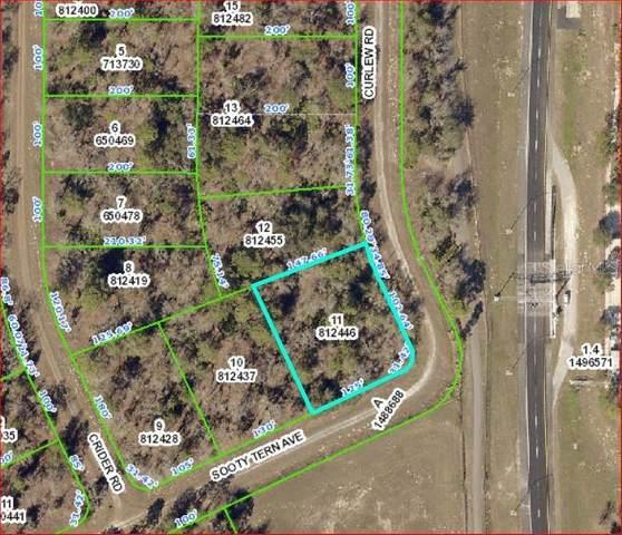 0 Sooty Tern Avenue, Weeki Wachee, FL 34614 (MLS #W7826481) :: Bustamante Real Estate