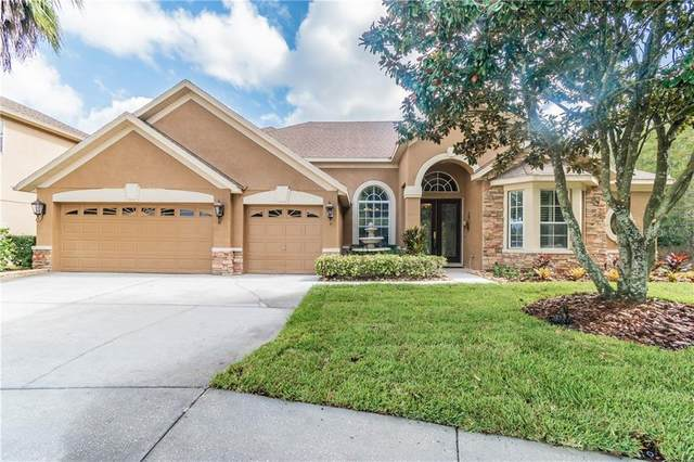3540 Duke Firth Street, Land O Lakes, FL 34638 (MLS #W7826517) :: Rabell Realty Group