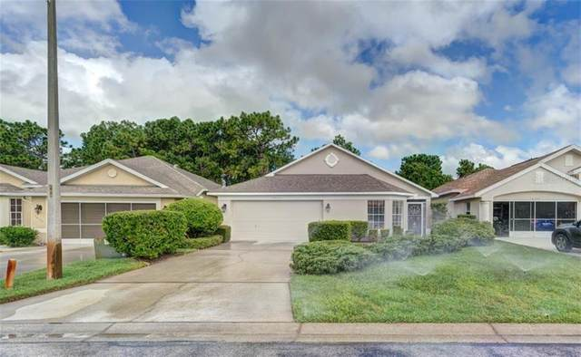 10131 Holly Berry Drive, Weeki Wachee, FL 34613 (MLS #W7826540) :: Alpha Equity Team