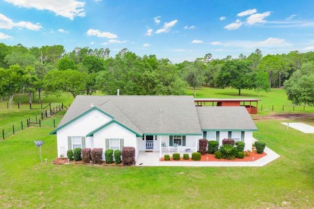 9022 S Evans Avenue, Inverness, FL 34452 (MLS #W7826559) :: The Price Group