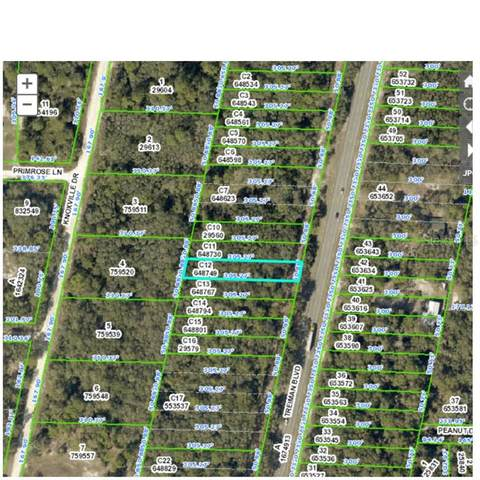 0 Treiman Boulevard, RIDGE MANOR ESTATES, FL 33597 (MLS #W7826582) :: Armel Real Estate