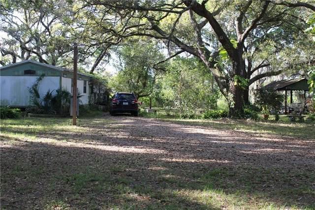 12618 Glenna Avenue, Tampa, FL 33635 (MLS #W7826653) :: Team Buky