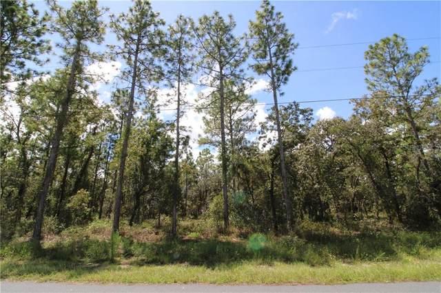 Ipswich Sparrow Road, Weeki Wachee, FL 34614 (MLS #W7826666) :: Cartwright Realty
