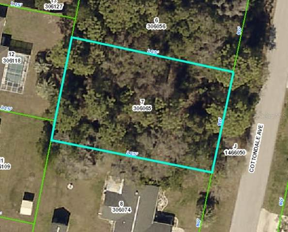 2057 Cottondale Avenue, Spring Hill, FL 34608 (MLS #W7826679) :: The Heidi Schrock Team