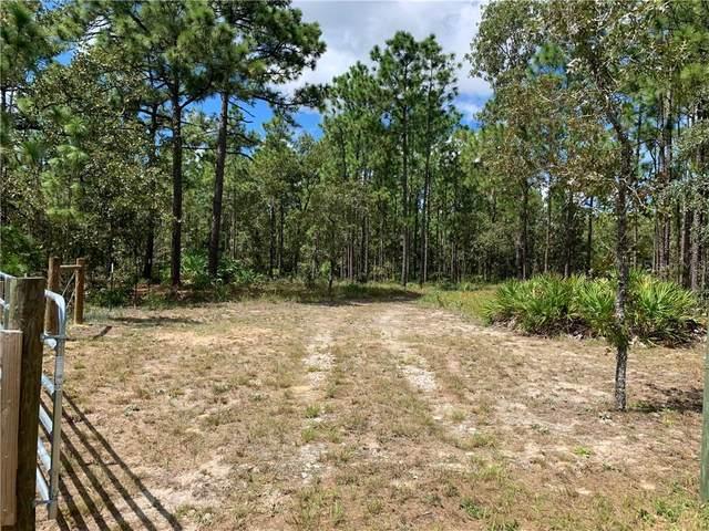 Sooty Tern Avenue, Weeki Wachee, FL 34614 (MLS #W7826693) :: Cartwright Realty