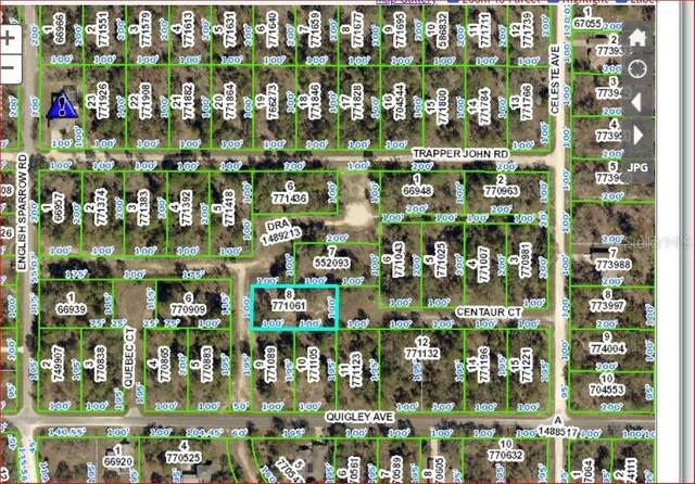 Centaur Court, Weeki Wachee, FL 34614 (MLS #W7826743) :: Rabell Realty Group