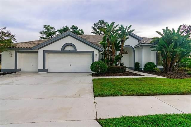 8557 Danbury Lane, Hudson, FL 34667 (MLS #W7826765) :: Cartwright Realty