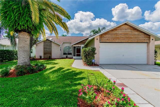 8436 Yearling Lane, New Port Richey, FL 34653 (MLS #W7826771) :: Griffin Group