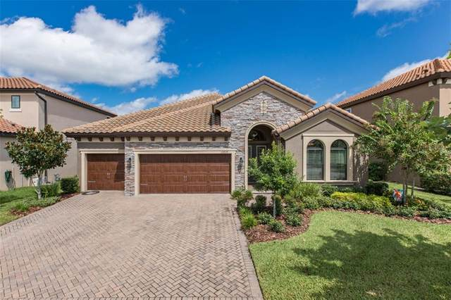 12825 Berrypick Trail, Odessa, FL 33556 (MLS #W7826783) :: Team Bohannon Keller Williams, Tampa Properties