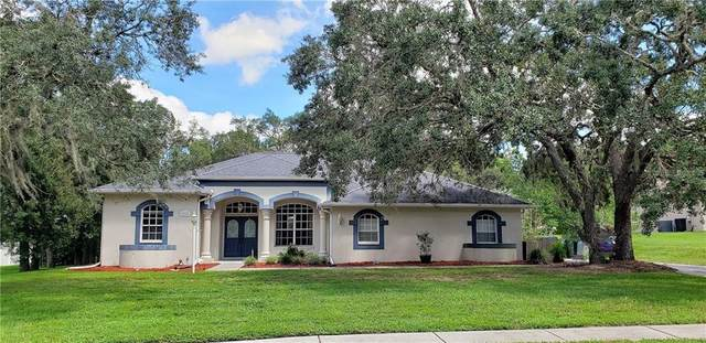 13133 Roseanna Drive, Spring Hill, FL 34609 (MLS #W7826792) :: Griffin Group