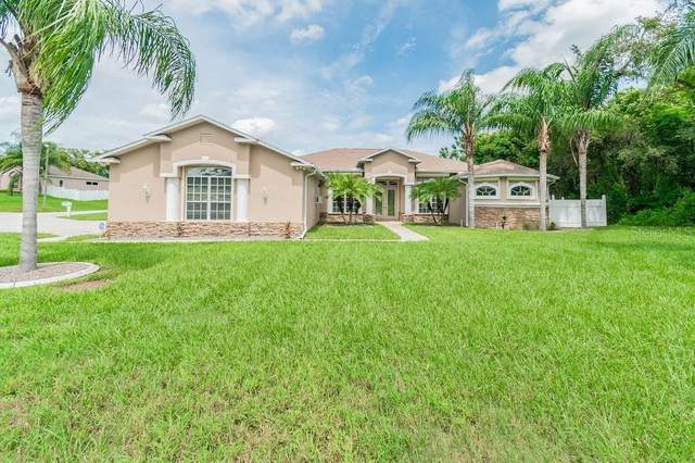 176 Fountain Court, Spring Hill, FL 34606 (MLS #W7826801) :: Heckler Realty
