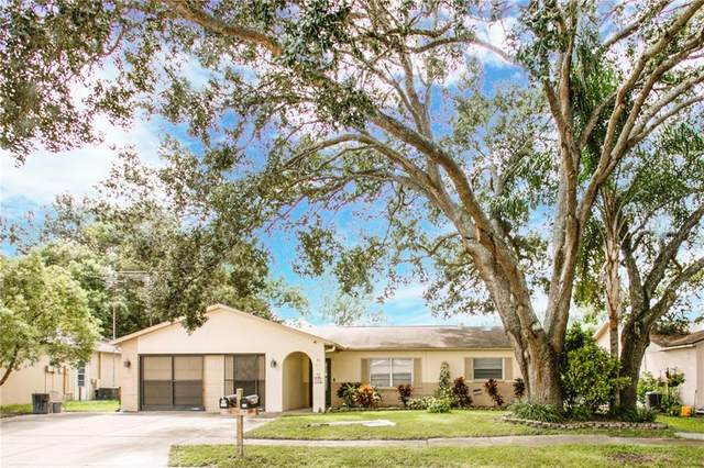 7910 Royal Stewart Drive, New Port Richey, FL 34653 (MLS #W7826816) :: Pepine Realty