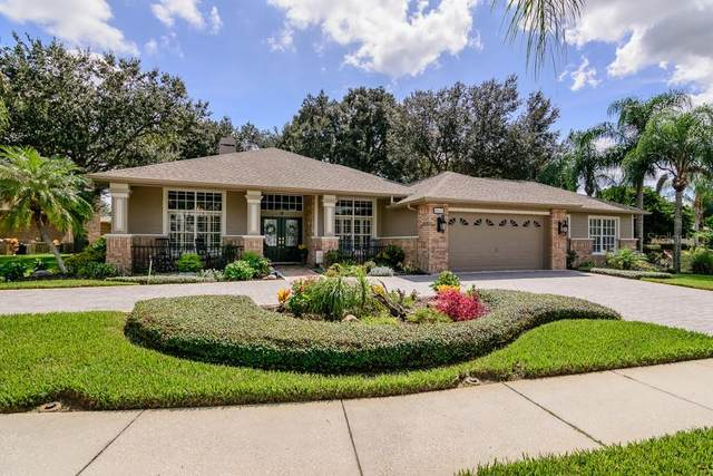 9025 Callaway Drive, Trinity, FL 34655 (MLS #W7826828) :: Team Bohannon Keller Williams, Tampa Properties