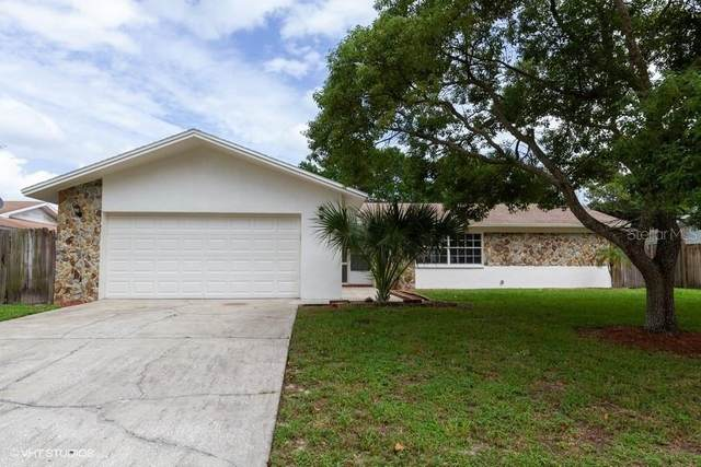 11140 Island Pine Drive, Port Richey, FL 34668 (MLS #W7826843) :: Zarghami Group