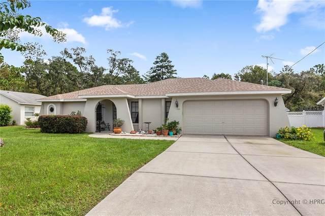 3344 Bluestone Avenue, Spring Hill, FL 34609 (MLS #W7826846) :: GO Realty