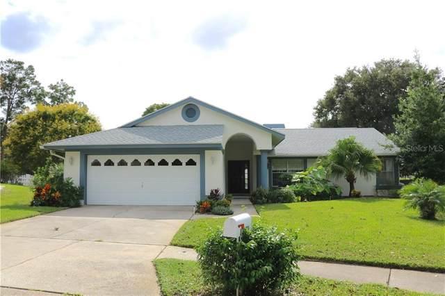 13631 Dunwoody Court, Hudson, FL 34667 (MLS #W7826869) :: Griffin Group