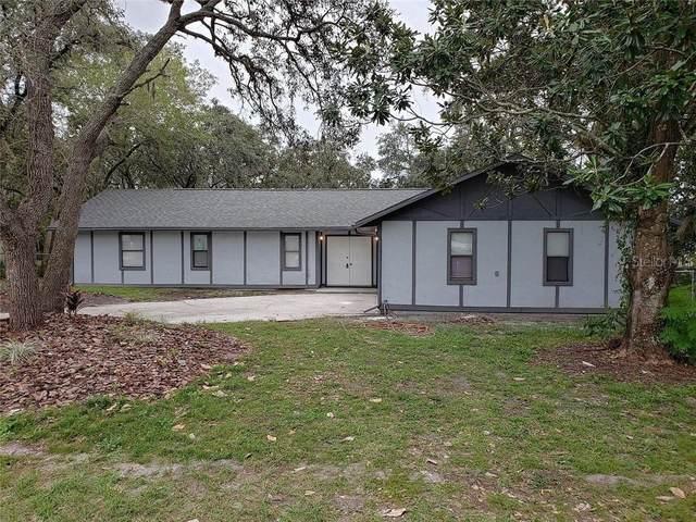 8369 Tranquil Drive, Spring Hill, FL 34606 (MLS #W7826883) :: Team Bohannon Keller Williams, Tampa Properties