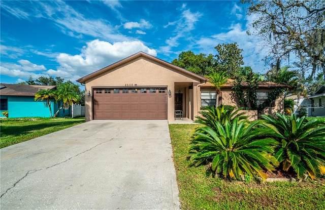 4608 Swallowtail Drive, New Port Richey, FL 34653 (MLS #W7826885) :: Premier Home Experts