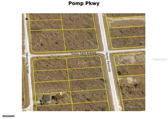 16123 Pomp Parkway, Weeki Wachee, FL 34614 (MLS #W7826893) :: Team Buky