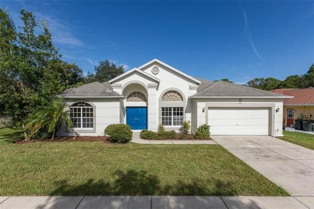 5013 Deer Lodge Road, New Port Richey, FL 34655 (MLS #W7826899) :: Team Bohannon Keller Williams, Tampa Properties