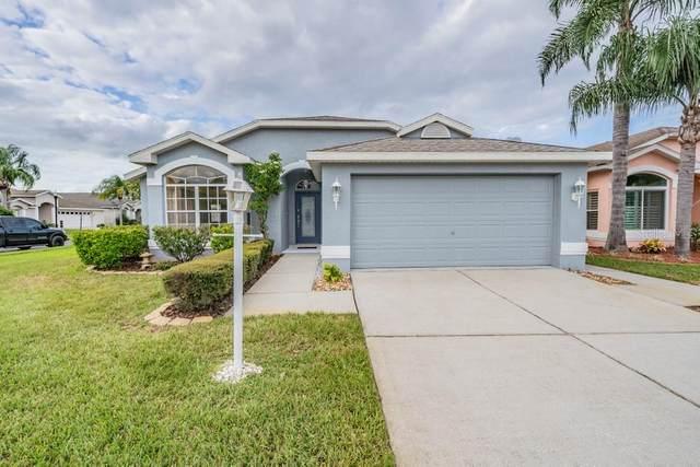 11443 Dampier Court, New Port Richey, FL 34654 (MLS #W7826902) :: Premier Home Experts