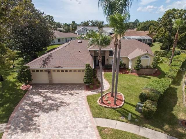 1135 Wedge Way, Spring Hill, FL 34608 (MLS #W7826903) :: GO Realty