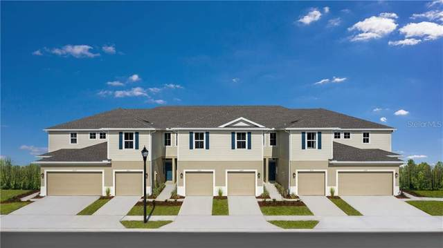3065 Jacob Crossing Lane, Holiday, FL 34691 (MLS #W7826911) :: Griffin Group