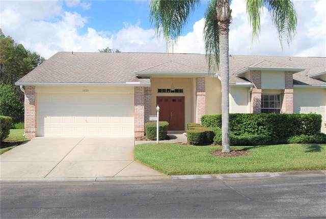 1033 Blyth Hill Court, Trinity, FL 34655 (MLS #W7826965) :: The Robertson Real Estate Group