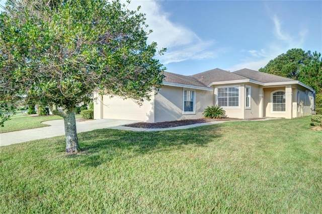 10157 Holly Berry Drive, Weeki Wachee, FL 34613 (MLS #W7826972) :: Sarasota Home Specialists