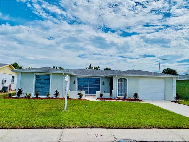 1152 Chelsea Lane, Holiday, FL 34691 (MLS #W7826980) :: Rabell Realty Group