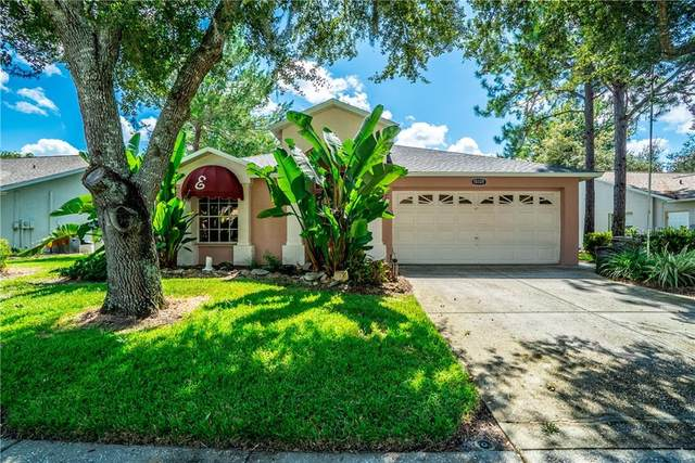 10328 Pineneedles Drive, New Port Richey, FL 34654 (MLS #W7826996) :: Heckler Realty