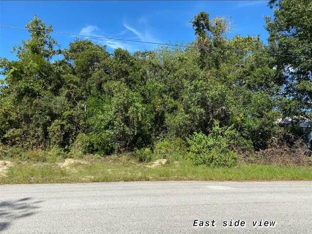 113 Cabot Avenue, Spring Hill, FL 34606 (MLS #W7827004) :: Dalton Wade Real Estate Group