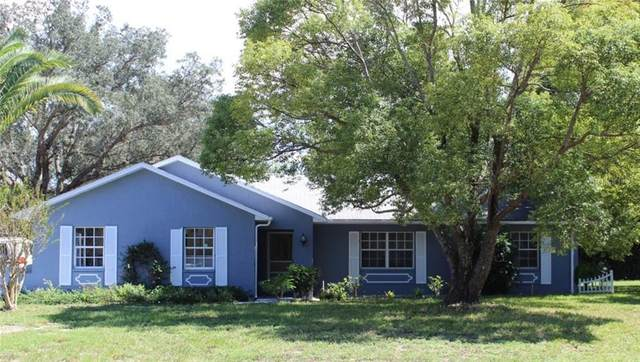 4495 Bluewater Avenue, Spring Hill, FL 34606 (MLS #W7827033) :: Rabell Realty Group