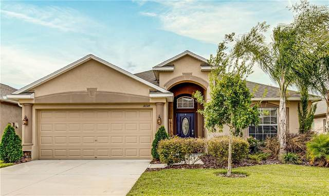 18314 Scunthorpe Lane, Land O Lakes, FL 34638 (MLS #W7827074) :: Griffin Group