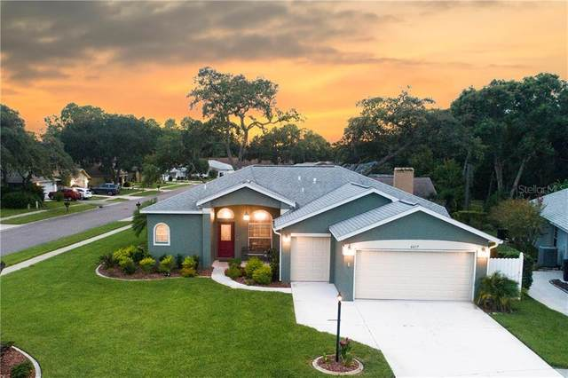 6617 Pine Walk Drive, New Port Richey, FL 34655 (MLS #W7827097) :: Team Borham at Keller Williams Realty