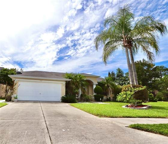 7931 Starfire Way, New Port Richey, FL 34654 (MLS #W7827162) :: KELLER WILLIAMS ELITE PARTNERS IV REALTY