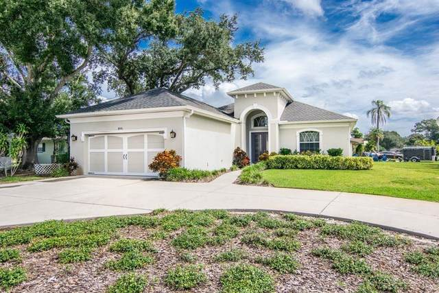 8591 Forsyth Drive, Seminole, FL 33772 (MLS #W7827287) :: Keller Williams on the Water/Sarasota