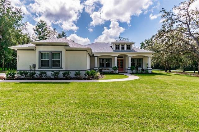12367 Cassowary Lane, Spring Hill, FL 34610 (MLS #W7827295) :: Griffin Group