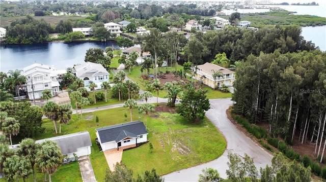 Driftwood Drive, Hudson, FL 34667 (MLS #W7827301) :: Griffin Group