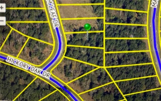 4986 Elm Leaf Drive, Brooksville, FL 34601 (MLS #W7827440) :: Griffin Group