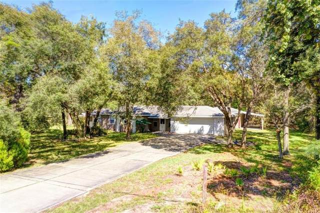 9365 May Gold Lane, Spring Hill, FL 34608 (MLS #W7827442) :: Premier Home Experts