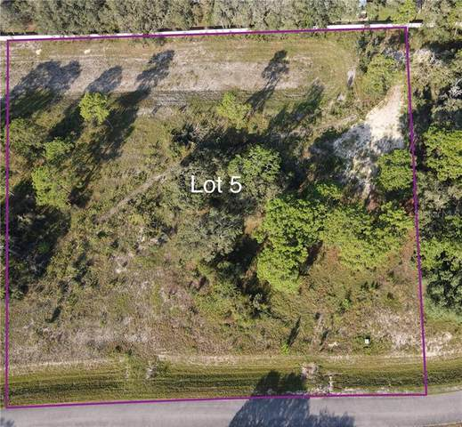 17723 Lippizan Lane, Hudson, FL 34667 (MLS #W7827524) :: Everlane Realty