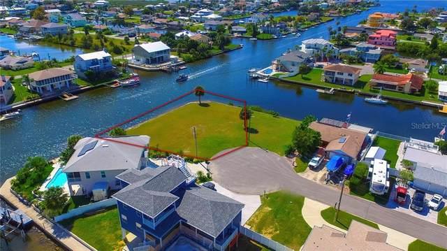 6TH ISLE Drive, Hernando Beach, FL 34607 (MLS #W7827542) :: Griffin Group