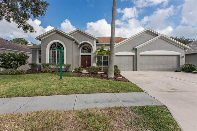 9022 Callaway Drive, Trinity, FL 34655 (MLS #W7827551) :: Carmena and Associates Realty Group
