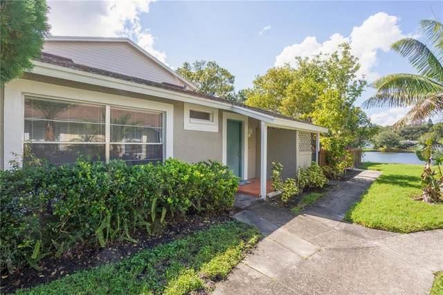 15608 Morning Drive, Lutz, FL 33559 (MLS #W7827616) :: Team Bohannon Keller Williams, Tampa Properties