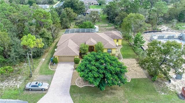 8130 Nightwalker Road, Weeki Wachee, FL 34613 (MLS #W7827660) :: Griffin Group