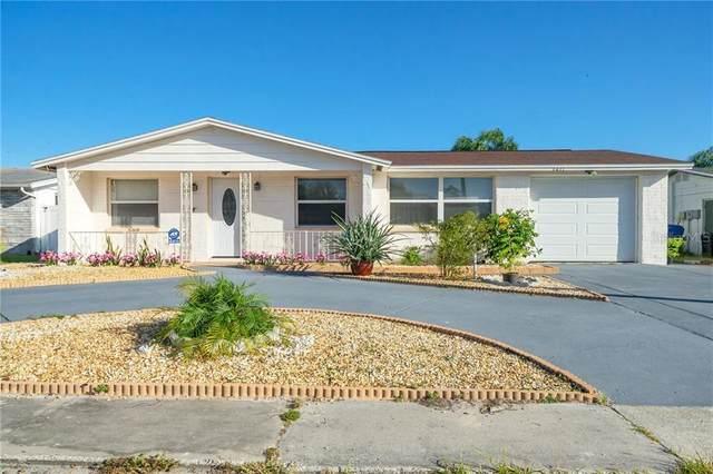 3411 Seffner Drive, Holiday, FL 34691 (MLS #W7827667) :: Frankenstein Home Team