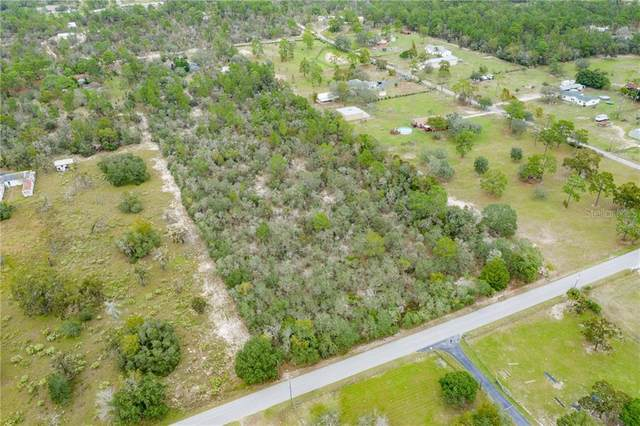 13251 Montour Street, Brooksville, FL 34613 (MLS #W7827736) :: Bustamante Real Estate