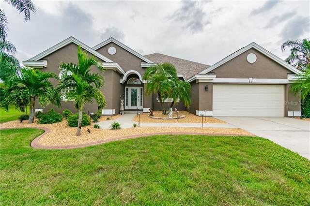 1539 Daylily Drive, Trinity, FL 34655 (MLS #W7827743) :: Frankenstein Home Team