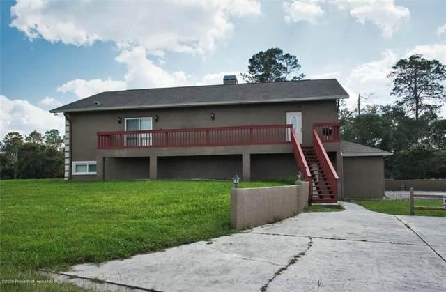 9428 Bluebird Avenue, Weeki Wachee, FL 34613 (MLS #W7827773) :: Griffin Group